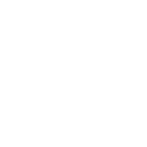 Court Administration Logo in White